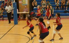 Volleyball Teams Fall Hard to Rosedale