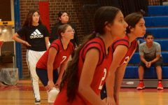Volleyball Ends Season with Double Wins Against Rosedale